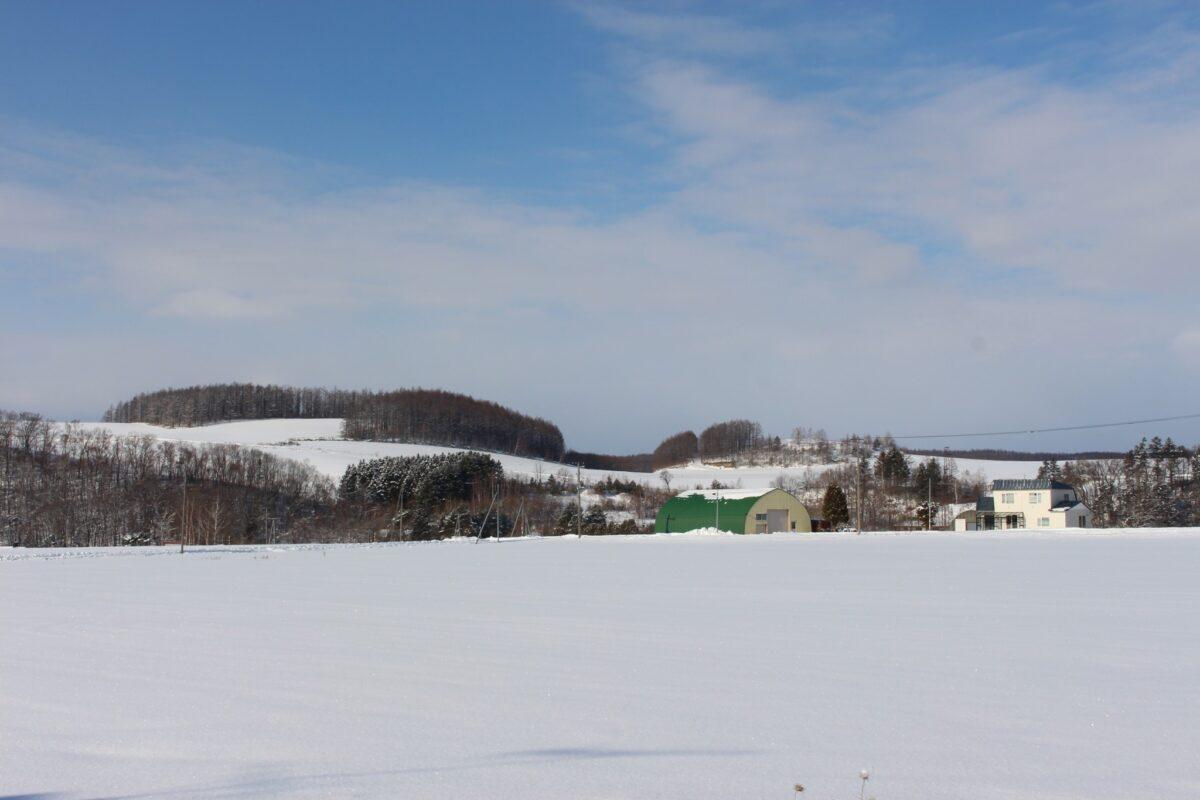 北海道,雪