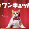 ワイモバイル!SoftBankユーザーを対象に「スマホプラン割引期間限定キャンペーン」を開始!