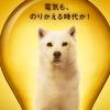 ワイモバイル!10月2日から「おうちでんき」受付開始!!