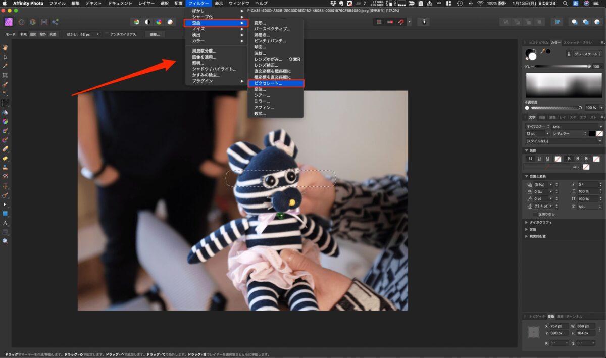 Affinity Photoで写真にモザイクをかける簡単な方法!