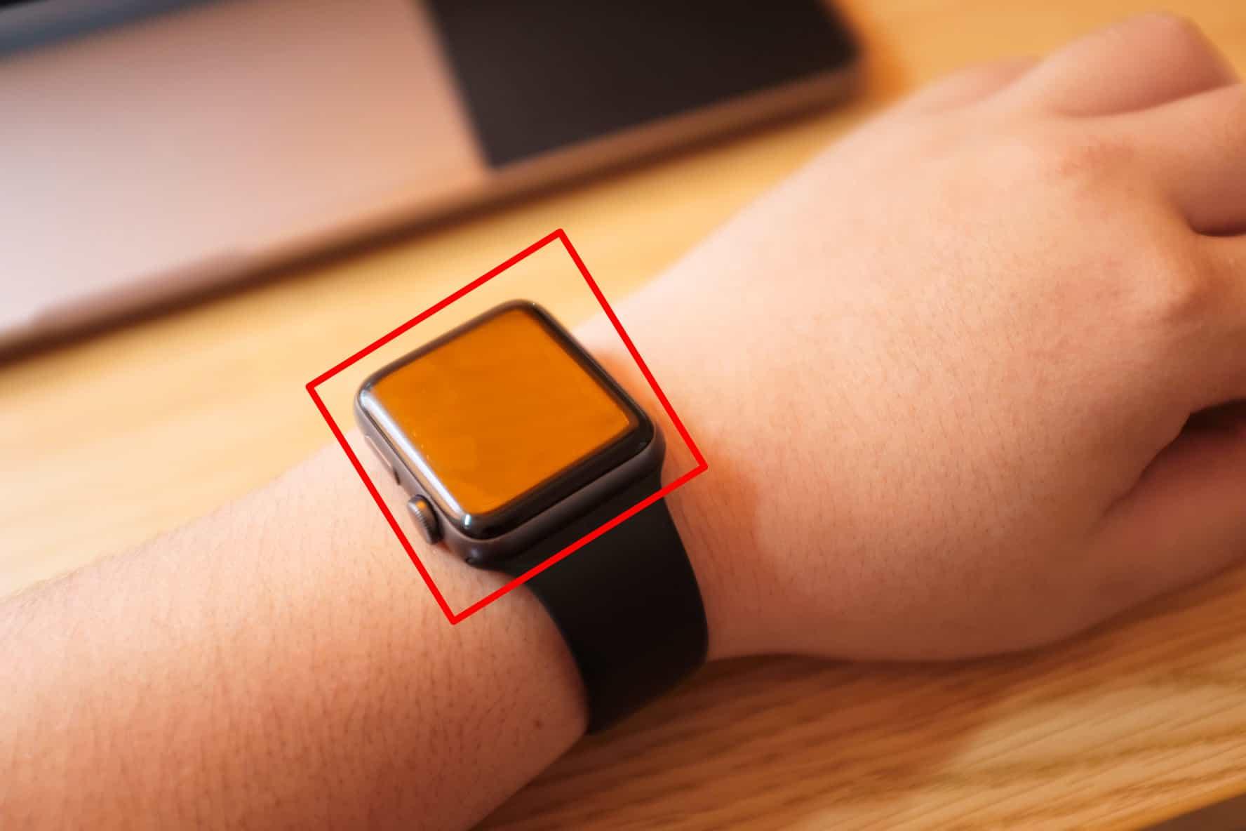 Apple Watch本体の裏側とかすげーやばいから